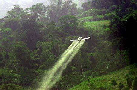 fumigaciones en el plan colombia, acusado de financiar empresas paramilitares y narcotraficantes