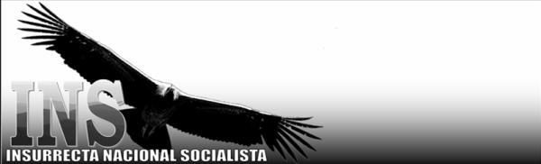 Blog Insurrecta Nacionalsocialista, de extrema derecha en Colombia